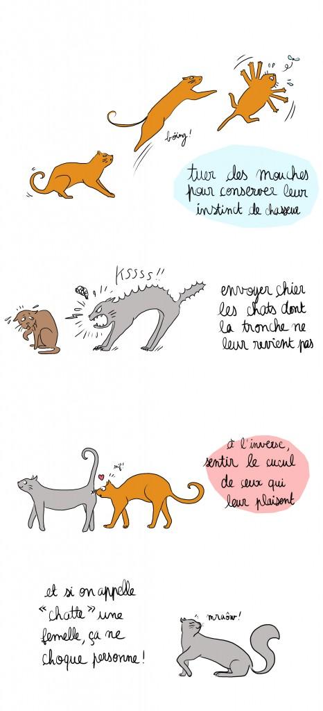 monde meilleur chats - Droits d'auteur : Camille Skrzynski
